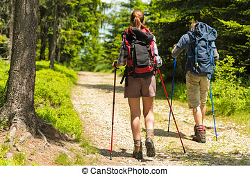Hikers on path with trekking poles - Sporty hikers on path...
