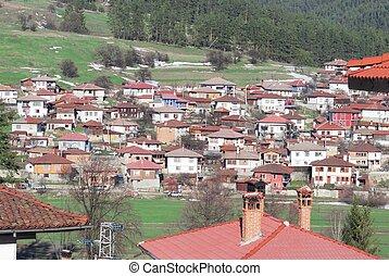 vilage houses