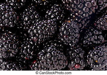 Blackberries - Background texture of several blackberries.