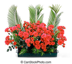 Flowerpot with small red roses and branches of cycas revoluta