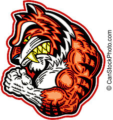 muscular tiger mascot