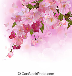 Pink card with cherry branch of flowers - Vector spring...