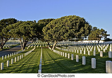 Headstones in a National Cemetery - The white headstones in...