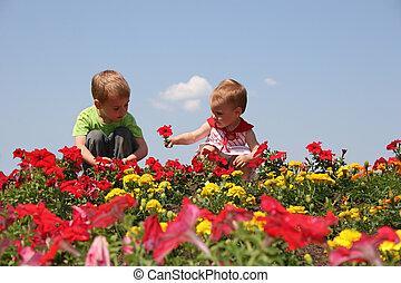 bebé, niño, flores