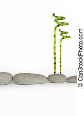Natural Stone Beauty - Zen abstract of natural grey spa...