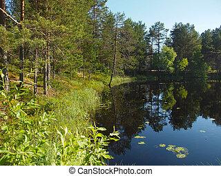 beautiful lake in Karelia