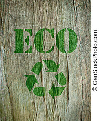 Eco friendly - The word eco imprinted into the bark of a...