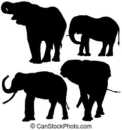 Elephant Silhouettes