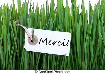 Grass background with Merci - Green Grass Background with...