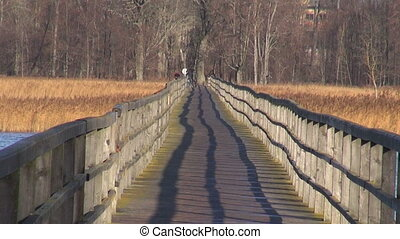 empty wooden bridge on autumn lake - long empty wooden...
