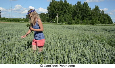 sexy girl pick wheat ears - Panorama of attractive woman...