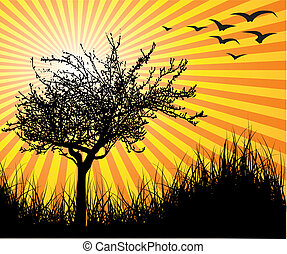 Vector tree with sunset