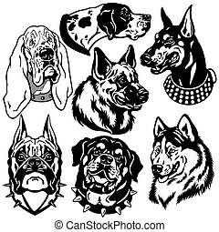 set with dogs heads icons Difference breeds Black and white...