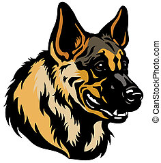 german shepherd head - german shepherd dog head isolated on...