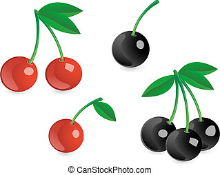 Tasty berries - Tasty red and black berries