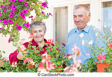 Elderly couple - The elderly couple admire their colorful...