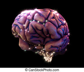 brain depiction - human brain depiction with...