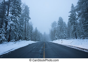 Snowy mountain road in Flagstaff, Arizona