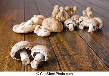 Mushrooms - Edible mushrooms variety on wood table