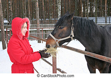 winter girl with horse