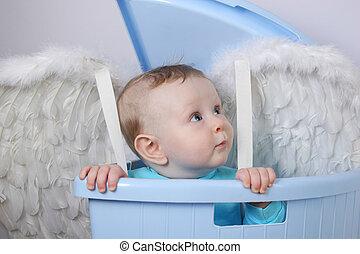 bebé, Ángel