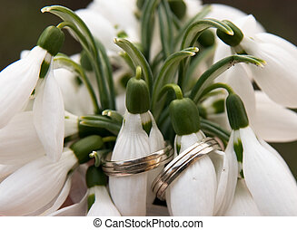 wedding rings on snowdrops