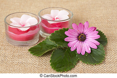 Relaxing spa scene with handmade candles, pink daisy flower...