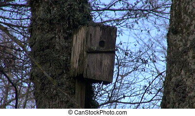 old aged wooden birds neste-box birdhouse in park