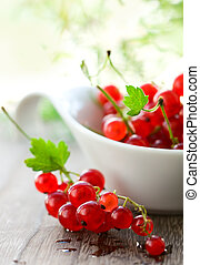 red currant - fresh red currant