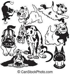 ensemble, dessin animé, chiens, noir, blanc