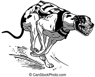 running racing dog black white - running racing dog, english...