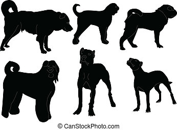 dogs collection - vector - illustration of dogs collection -...