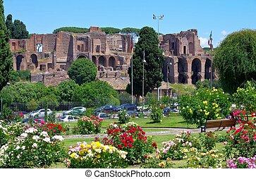 Rome Terme di Massenzio