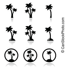 Palm trees, exotic holidays on beac - Collection of palm...