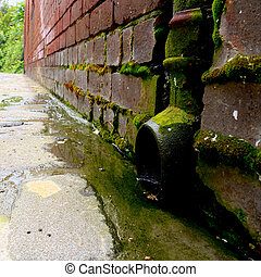 mossy downpipe - rusty and mossy down pipe in an old...