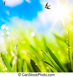 abstracts spring  background