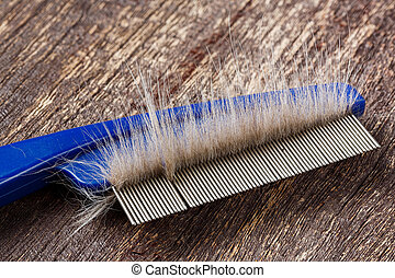 Fur on cat comb - Close up fur or hair on cat comb on old...