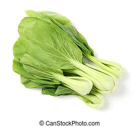Green pak choi  - Close up green pak choi vegetable on white