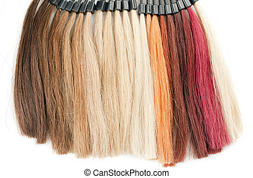 hair - palette of hairs isolated on white background