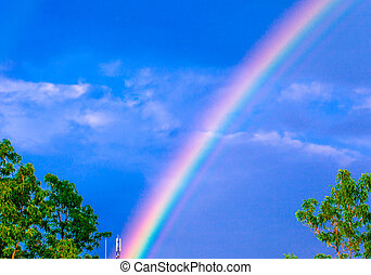 Colors of the rainbow after rain