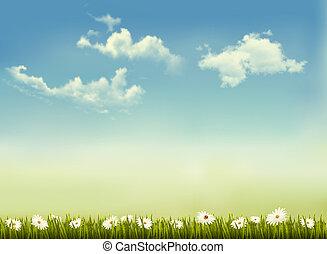 retro, natureza, fundo, verde, capim, céu, vetorial