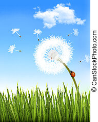 Nature background with a dandelion and a ladybug. Vector.