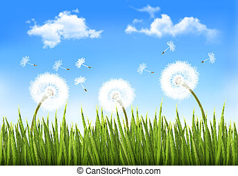 Nature background with dandelions. Vector.