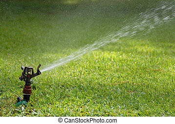 lawn sprinkler - Lawn sprinkler spraying the green grass...