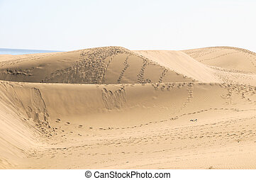 Sand Dune Desert