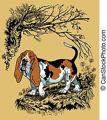 basset hound illustration - hunting dog in forest, basset...
