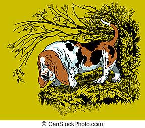 basset hound illustration - hunting dog in forest, bast...