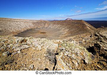 in los volcanes volcanic rt flower bush - in los volcanes...