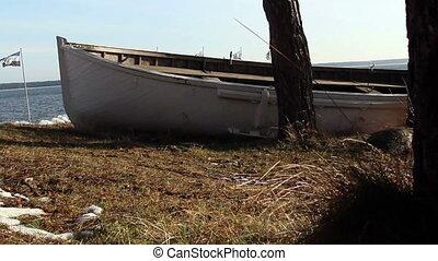 A white boat near a tree