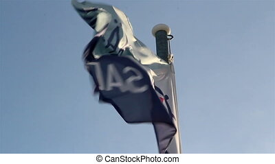 A waving flag on the pole - A flag waving because of the...